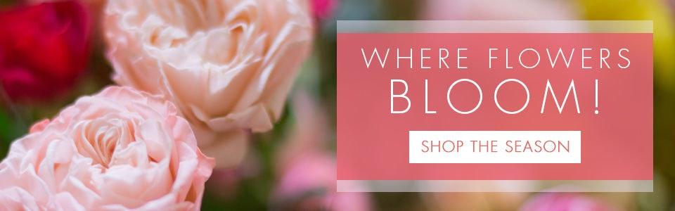 Best Cincinnati Florist - Adrian Durban Florist, Cincinnati OH Same Day  Delivery, Flower Shops Cincinnati (Ohio)