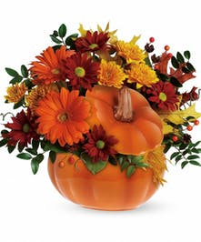 Country Pumpkin Floral Bouquet - Same-day Delivery Cincinnati