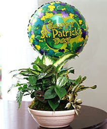 Includes Mylar Balloon!