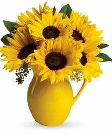 Sunny Days Sunflower Bouquet - Cincinnati, Ohio Flower Delivery