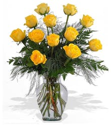 Beautiful Hand Picked Ecuadorian Yellow Roses