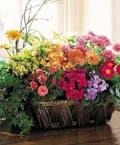 Deluxe European Garden Basket