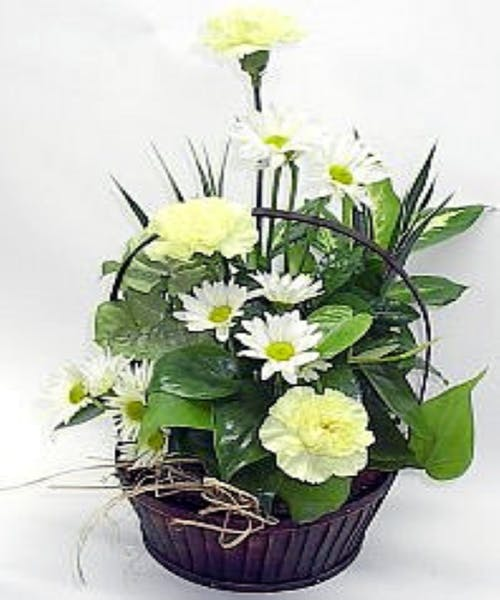 Planter with Fresh Cut Flowers