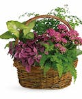 Surprise Garden Basket
