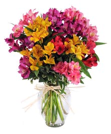 Mixed Peruvian Lilies in clear glass vase