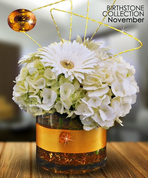 November Birthstone Collection