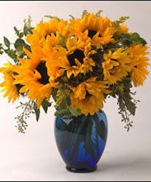 Sunny sunflowers in a Cobalt Blue Vase!