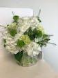 Round Vase w/Hydrangea & Greens