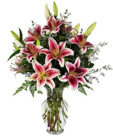 Enchanted Stargazer Lilies Flowers Cincinnati Oh Adrian Durban