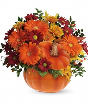 Autumn Pumpkin Floral Bouquet Same Day Delivery Cincinnati