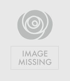 Blooming Plant Basket with Keepsake Angel